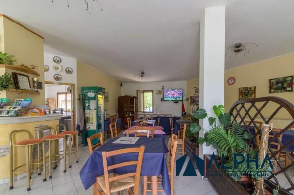 Locale Commerciale  in vendita a Bertinoro, Arredato, 300 mq - Foto 18