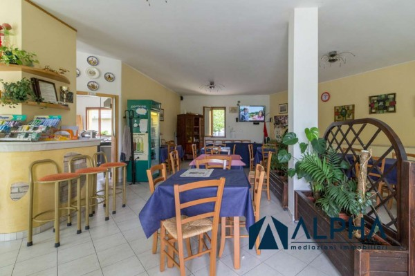 Locale Commerciale  in vendita a Bertinoro, Arredato, 300 mq - Foto 19