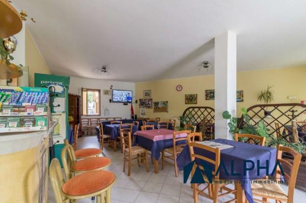 Locale Commerciale  in vendita a Bertinoro, Arredato, 300 mq - Foto 20
