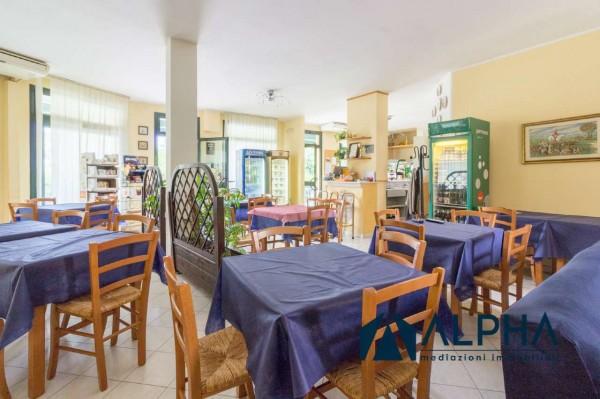 Locale Commerciale  in vendita a Bertinoro, Arredato, 300 mq - Foto 21