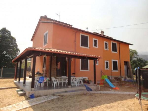 Casa indipendente in vendita a Nazzano, Tiberina, Con giardino, 110 mq