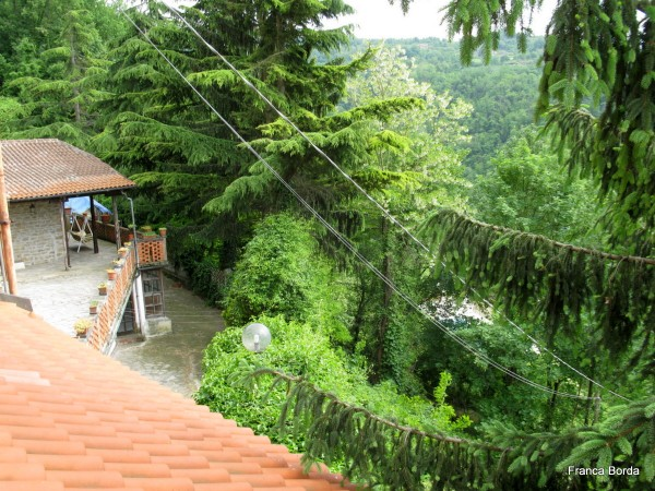 Rustico/Casale in vendita a Pezzolo Valle Uzzone, Cortemiglia, 600 mq - Foto 9