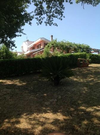 Villa in vendita a Rignano Flaminio, Via Di Vallelunga, Con giardino, 485 mq - Foto 18
