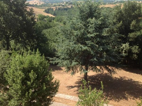 Villa in vendita a Rignano Flaminio, Via Di Vallelunga, Con giardino, 485 mq - Foto 7