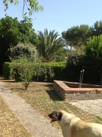 Villa in vendita a Rignano Flaminio, Via Di Vallelunga, Con giardino, 485 mq - Foto 2