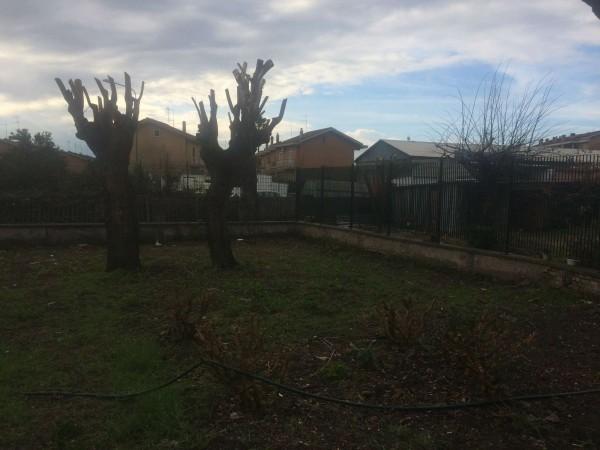 Appartamento in vendita a Roma, Ponte Galeria, Con giardino, 130 mq - Foto 8