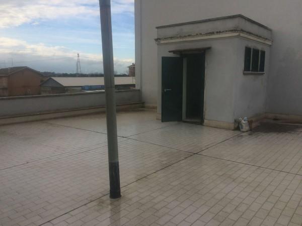 Appartamento in vendita a Roma, Ponte Galeria, Con giardino, 130 mq - Foto 16