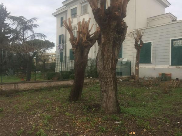Appartamento in vendita a Roma, Ponte Galeria, Con giardino, 130 mq - Foto 7