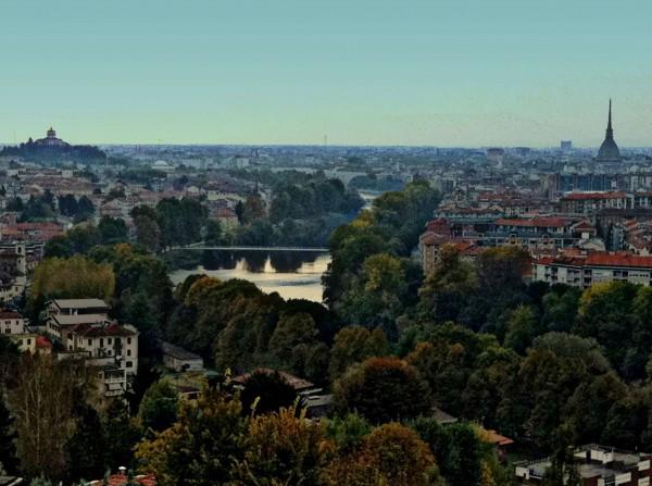 Appartamento in vendita a Torino, Precollina, Arredato, con giardino, 55 mq - Foto 7