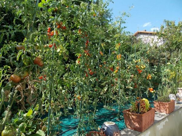 Casa indipendente in vendita a Leivi, 186 mq - Foto 4