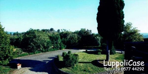 Villa in vendita a Monticiano, Con giardino, 400 mq - Foto 3