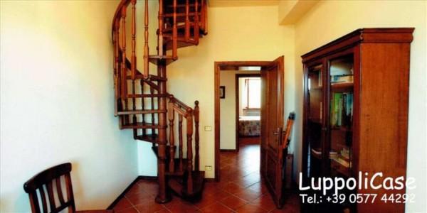 Villa in vendita a Monticiano, Con giardino, 400 mq - Foto 7