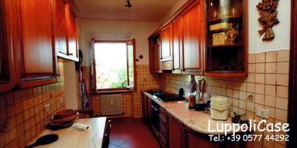 Villa in vendita a Monticiano, Con giardino, 400 mq - Foto 6