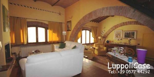 Villa in vendita a Sovicille, Con giardino, 250 mq