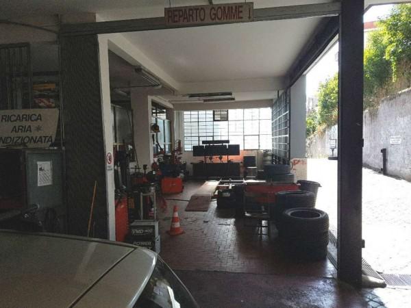 Locale Commerciale  in vendita a Roma, Torrevecchia, 1300 mq - Foto 5