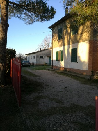 Locale Commerciale  in vendita a Grosseto, Casotto Dei Pescatori, 160 mq - Foto 8