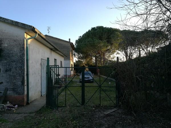 Locale Commerciale  in vendita a Grosseto, Casotto Dei Pescatori, 160 mq - Foto 5