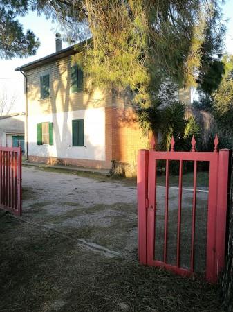 Locale Commerciale  in vendita a Grosseto, Casotto Dei Pescatori, 160 mq - Foto 1