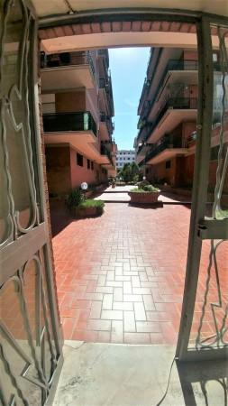 Appartamento in vendita a Roma, Ciampino, 85 mq - Foto 3