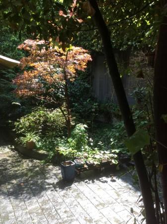 Appartamento in vendita a Milano, Spartaco, Con giardino, 300 mq - Foto 26