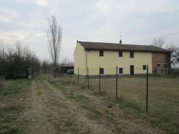 Rustico/Casale in vendita a Alessandria, San Giuliano Nuovo, Con giardino, 330 mq - Foto 2