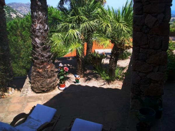 Villa in vendita a San Teodoro, Con giardino, 450 mq - Foto 14