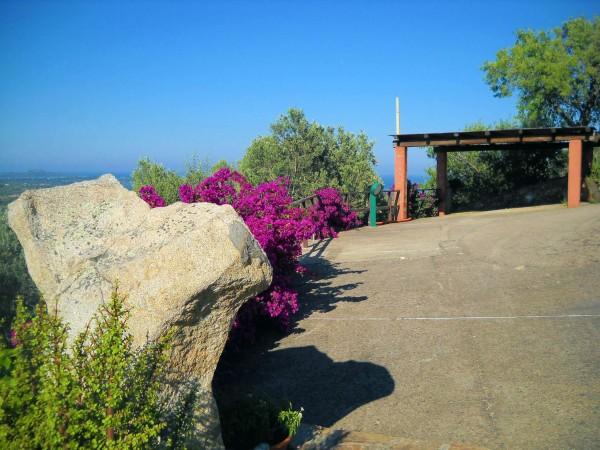 Villa in vendita a San Teodoro, Con giardino, 450 mq - Foto 2