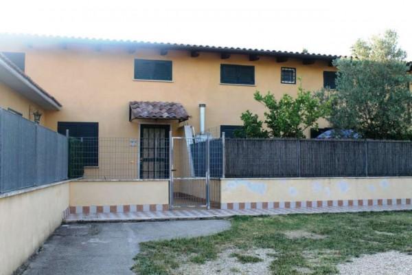 Villa in affitto a Roma, Con giardino, 80 mq - Foto 4