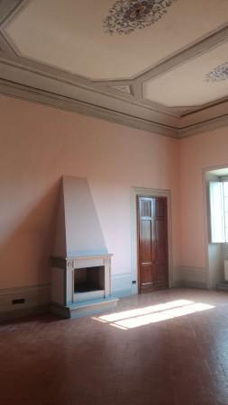 Appartamento in affitto a Firenze, Pian Dei Giullari, Con giardino, 110 mq