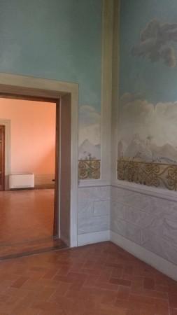 Appartamento in affitto a Firenze, Pian Dei Giullari, Con giardino, 110 mq - Foto 12