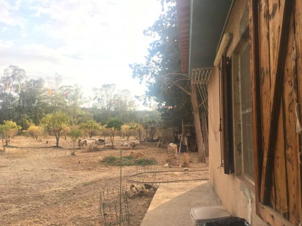 Rustico/Casale in vendita a Donori, Loc. Sa Corte Manna, Con giardino, 758 mq - Foto 31