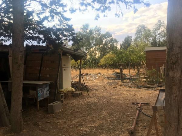 Rustico/Casale in vendita a Donori, Loc. Sa Corte Manna, Con giardino, 758 mq - Foto 19