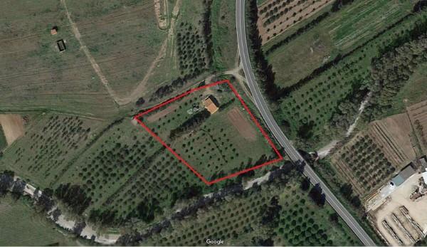 Rustico/Casale in vendita a Donori, Loc. Sa Corte Manna, Con giardino, 758 mq - Foto 2