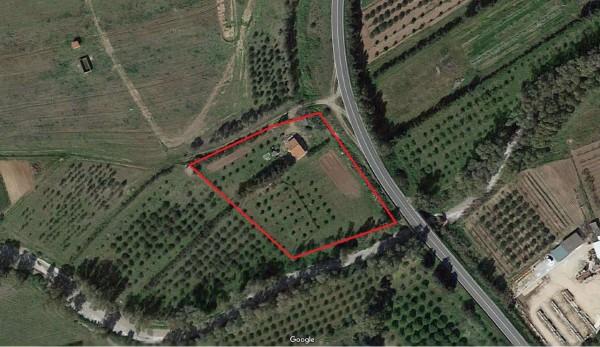 Rustico/Casale in vendita a Donori, Loc. Sa Corte Manna, Con giardino, 758 mq - Foto 3