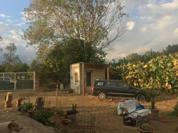 Rustico/Casale in vendita a Donori, Loc. Sa Corte Manna, Con giardino, 758 mq - Foto 33