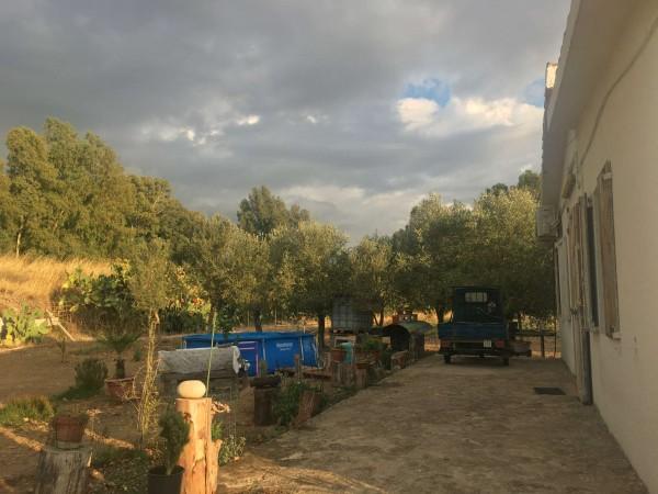 Rustico/Casale in vendita a Donori, Loc. Sa Corte Manna, Con giardino, 758 mq - Foto 35