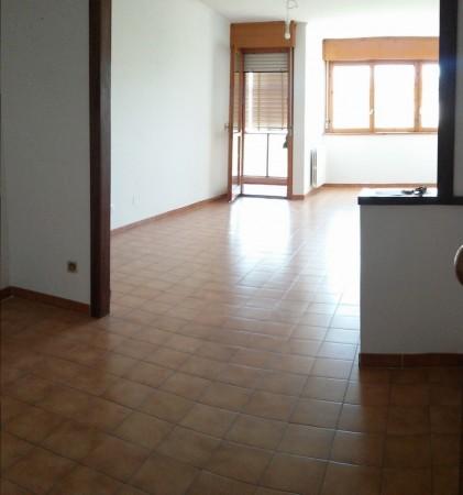 Appartamento in affitto a Roma, Portuense Casetta Mattei, 100 mq - Foto 19