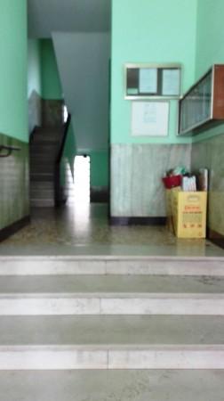 Appartamento in vendita a Torino, Barriera Di Milano, 50 mq - Foto 15