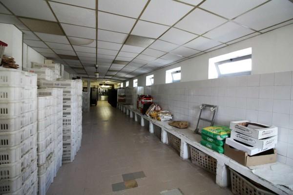 Locale Commerciale  in vendita a Alpignano, Centro, 350 mq - Foto 11
