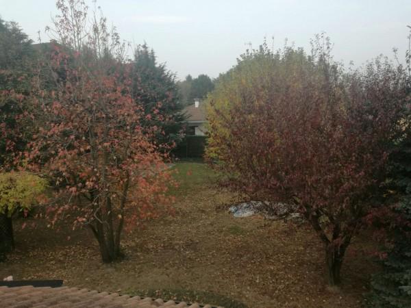 Villa in affitto a Rosta, Arredato, con giardino, 370 mq - Foto 6