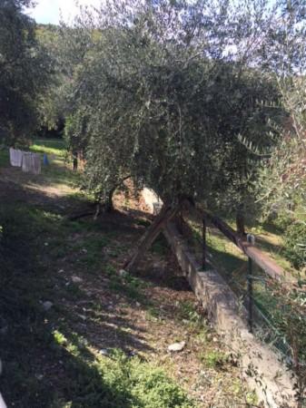 Villa in vendita a Recco, Con giardino, 170 mq - Foto 18