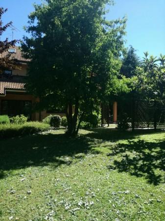 Villa in vendita a Rosta, Arredato, con giardino, 370 mq - Foto 50