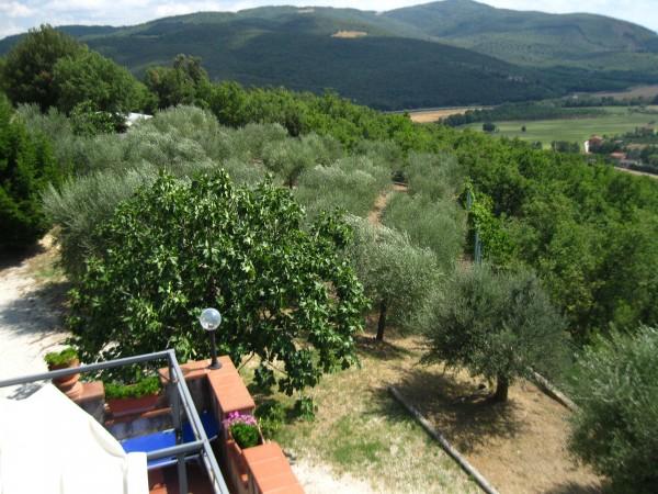 Villa in vendita a Corciano, Mantignana, Con giardino, 220 mq - Foto 6