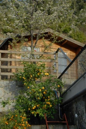 Villa in vendita a Casarza Ligure, Adiacenze Via Iv Novembre, Arredato, con giardino, 560 mq - Foto 13
