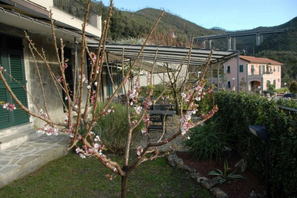Villa in vendita a Casarza Ligure, Adiacenze Via Iv Novembre, Arredato, con giardino, 560 mq - Foto 19