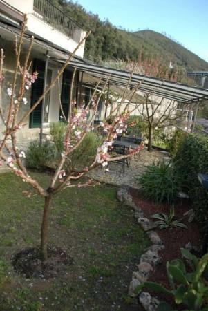 Villa in vendita a Casarza Ligure, Adiacenze Via Iv Novembre, Arredato, con giardino, 560 mq - Foto 18