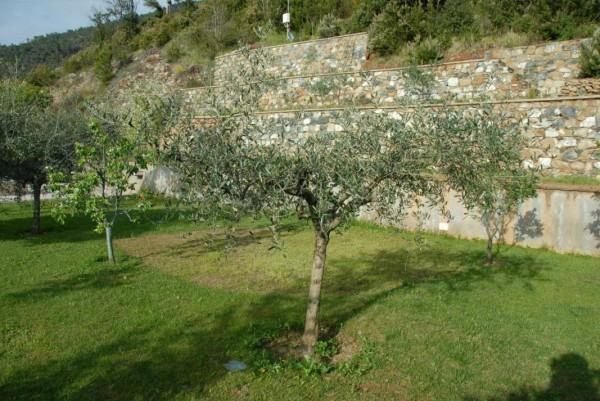 Villa in vendita a Casarza Ligure, Adiacenze Via Iv Novembre, Arredato, con giardino, 560 mq - Foto 4