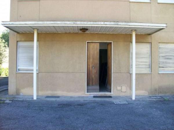 Capannone in vendita a Roma, Settebagni, Con giardino, 2200 mq - Foto 9