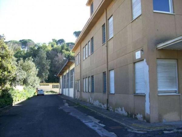 Capannone in vendita a Roma, Settebagni, Con giardino, 2200 mq - Foto 16