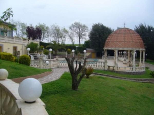 Villa in vendita a Roma, Trigoria, Con giardino, 790 mq - Foto 12